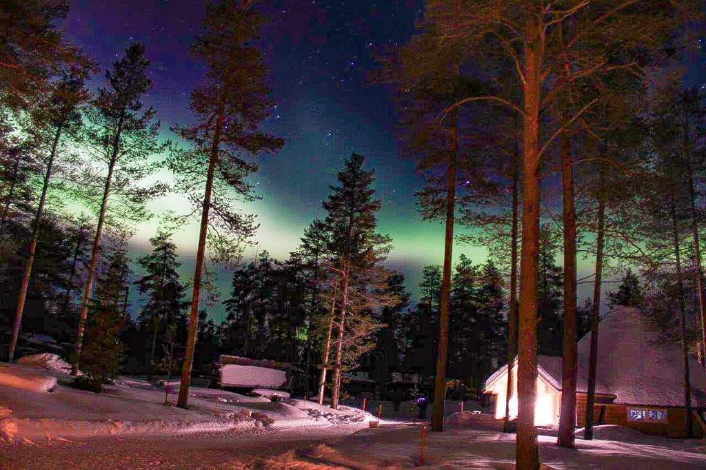 Nordlicht Huskycamp